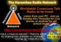 The Harambee Radio and Television Network